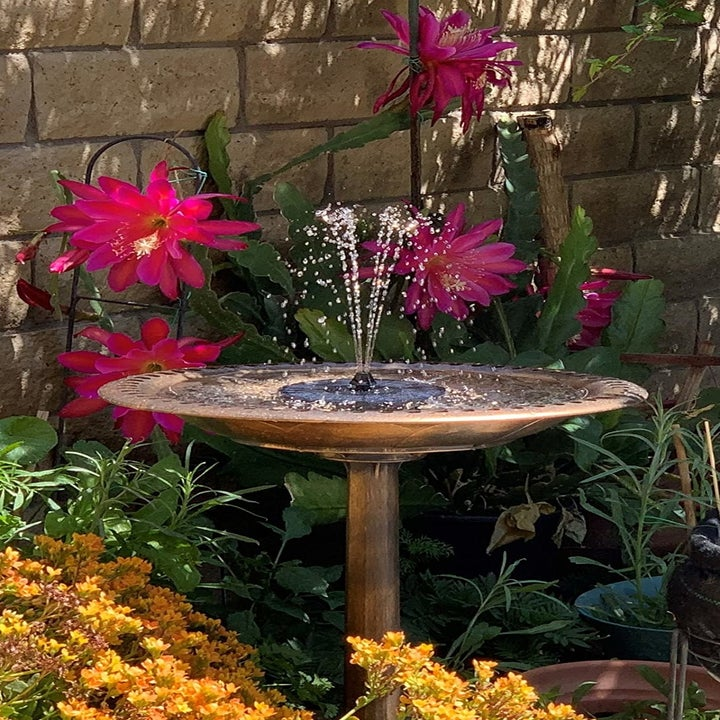 A brass-painted bird bath with a solar powered fountain in the center