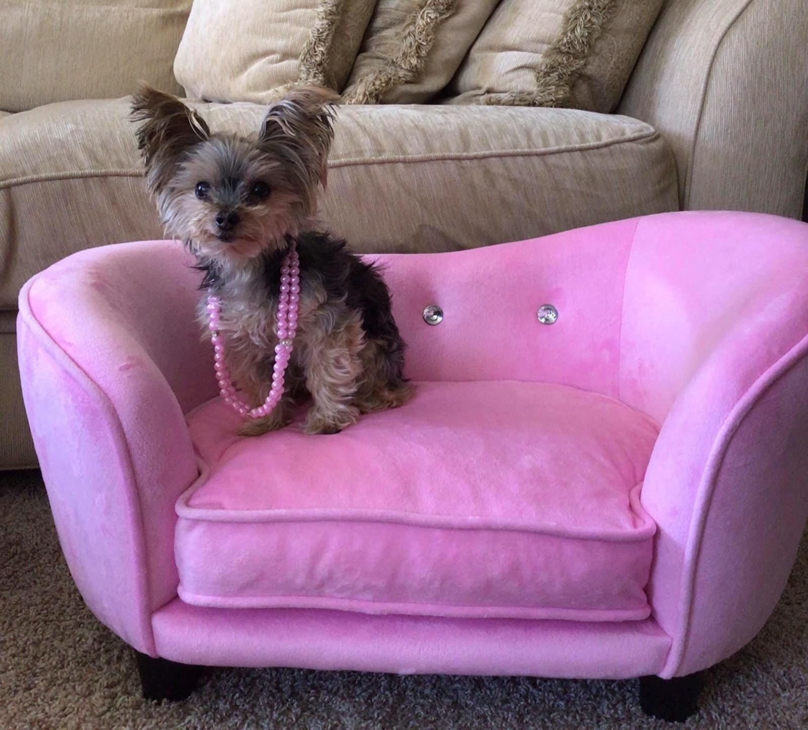 reviewer image of a tiny dog wearing pink beads sitting on the pink enchanted home snuggle chaise