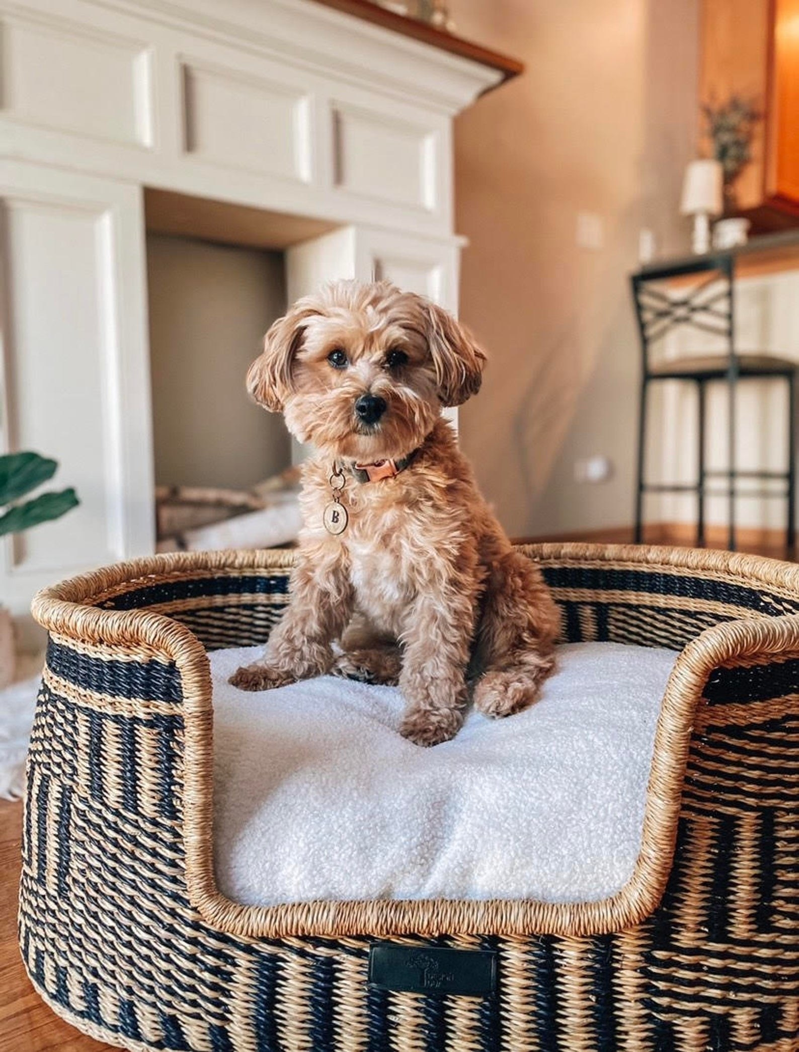 a small dog sits atop a fluffy cushion inside of a handmade basket bed