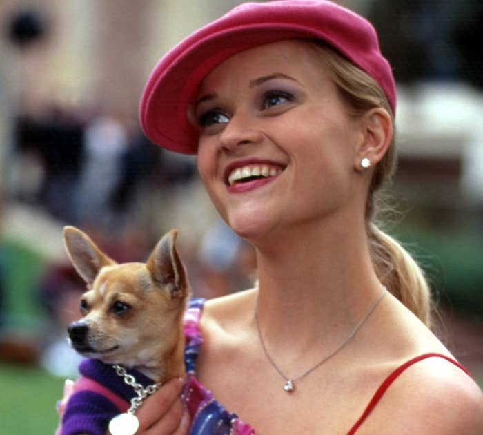 Reese holding her characters Chihuahua and rocking a newsboy cap