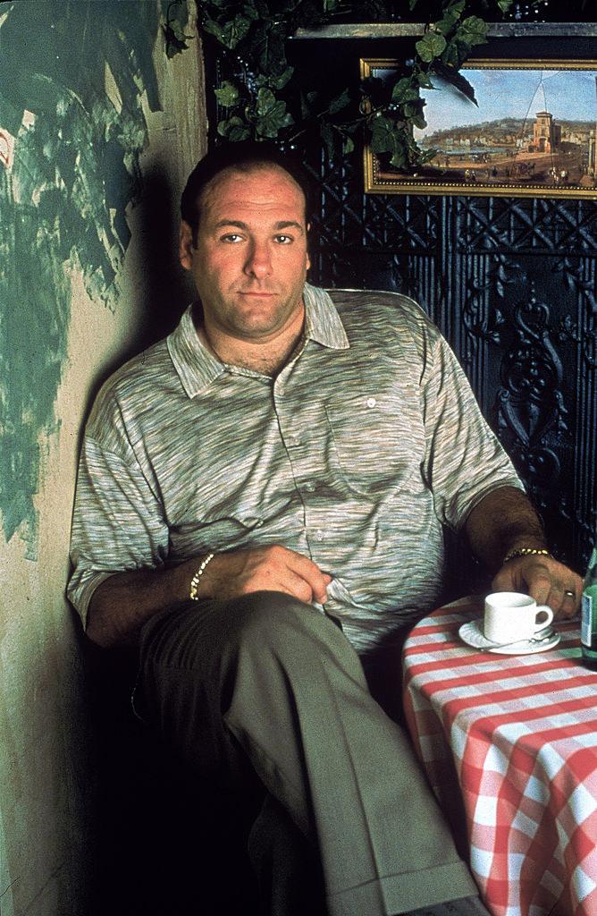 James Gandolfini poses in a cafe