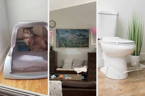 A cat in a self cleaning litter box / A frame TV / An acrylic squatty potty