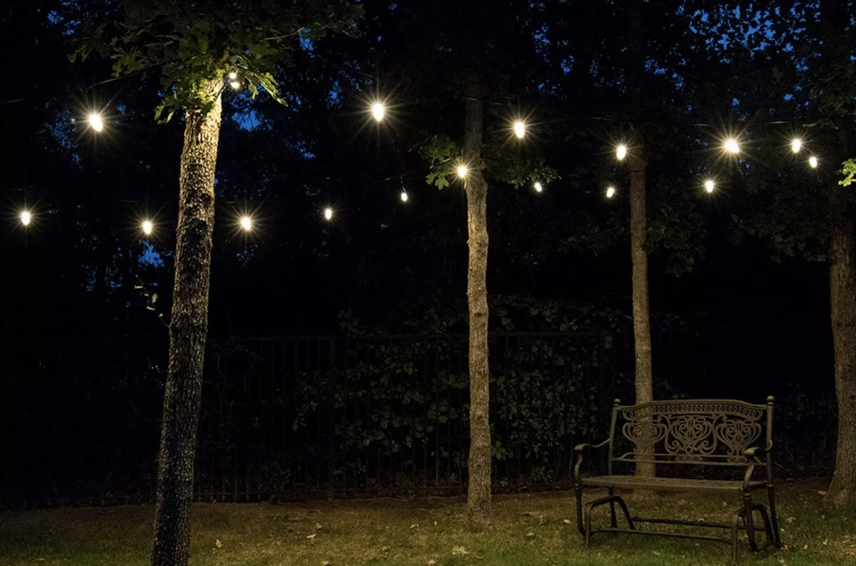 There are bright string lights hung outdoor in trees at night