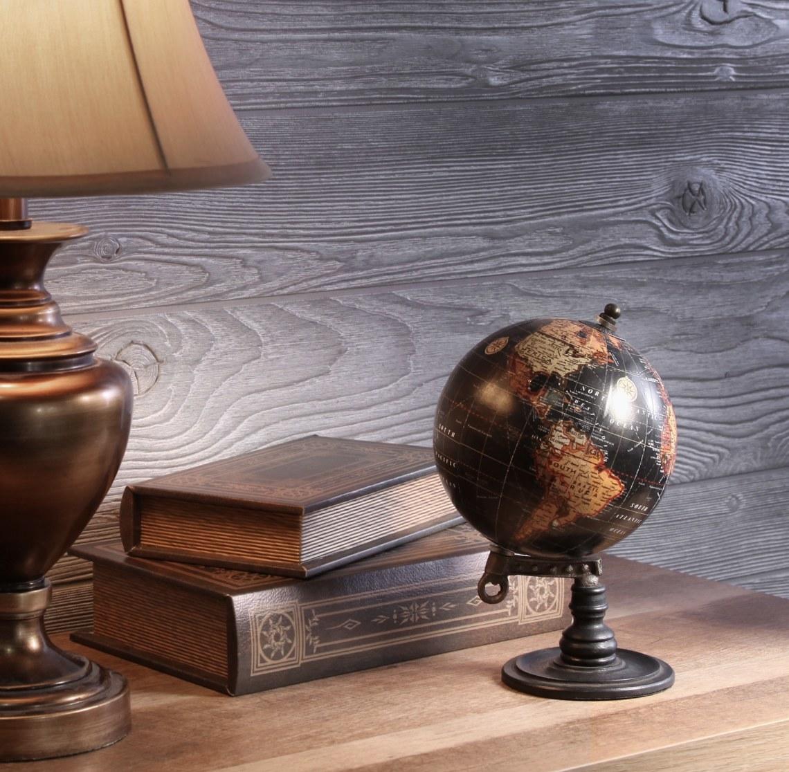The predominantly black globe has neutral-toned land