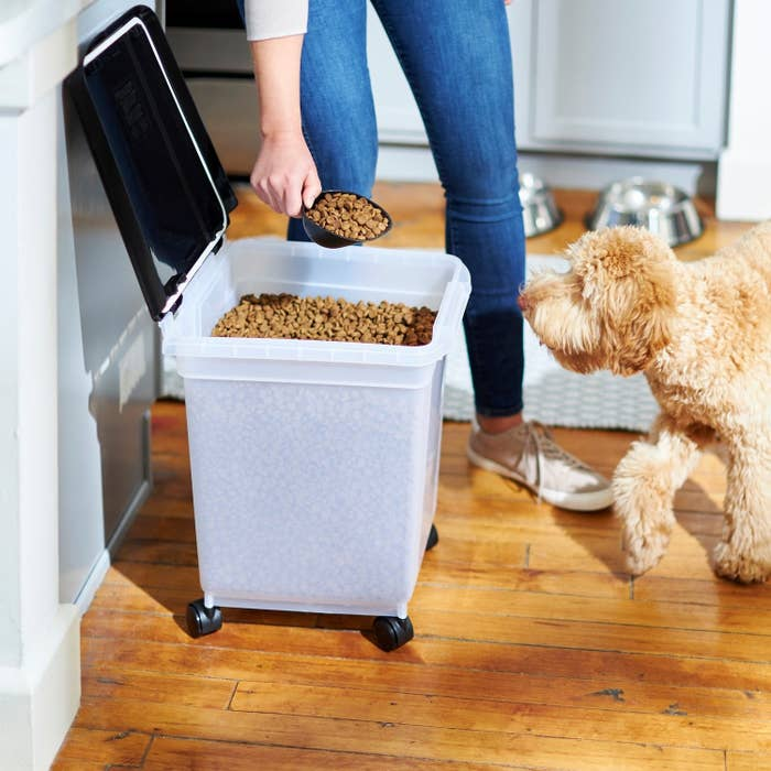 The storage container holding dog food