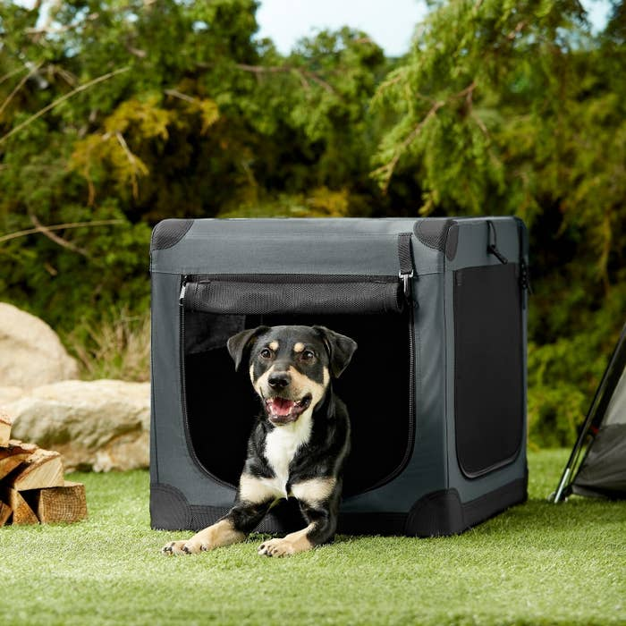 A dog sitting in the outdoor crate