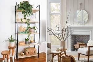 shelves / mirror