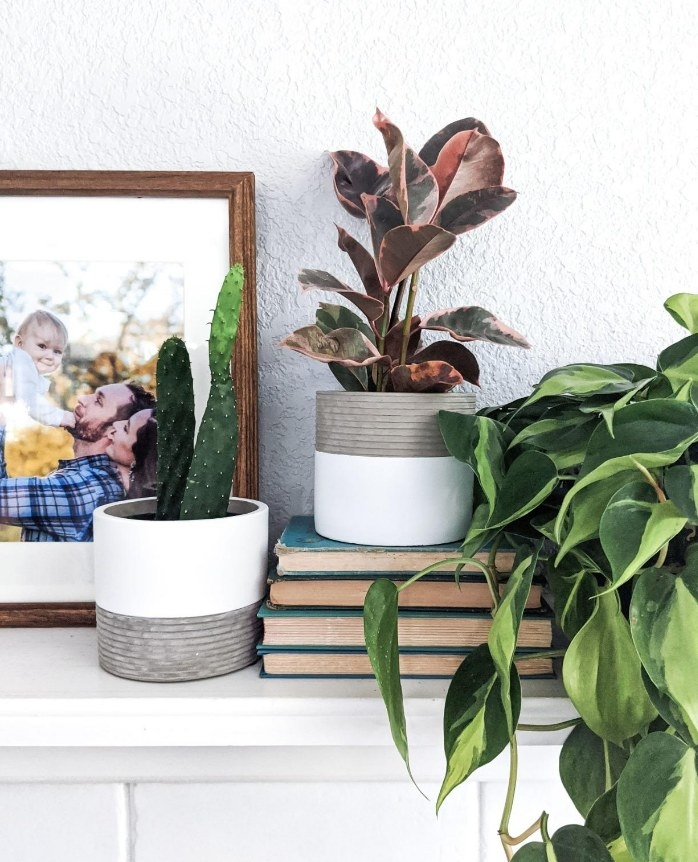 A set of white/grey cement succulent planters atop a table