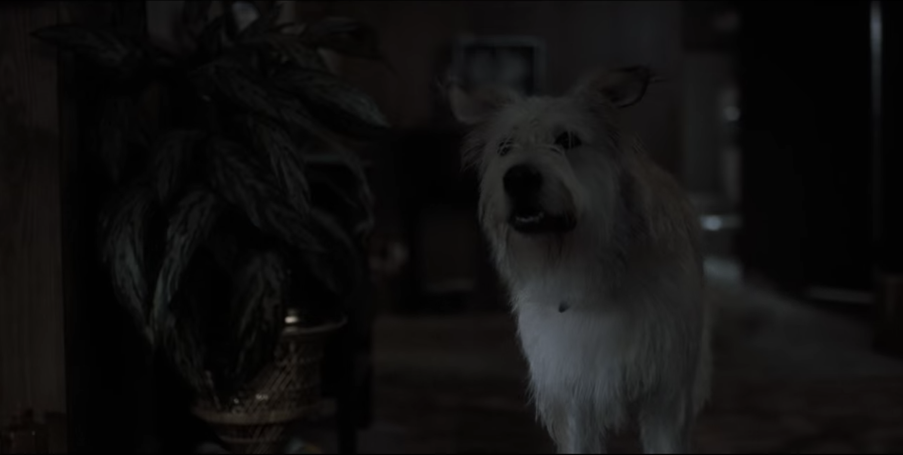 The Byers' dog is pictured in this screengrab from the pilot episode of Stranger Things