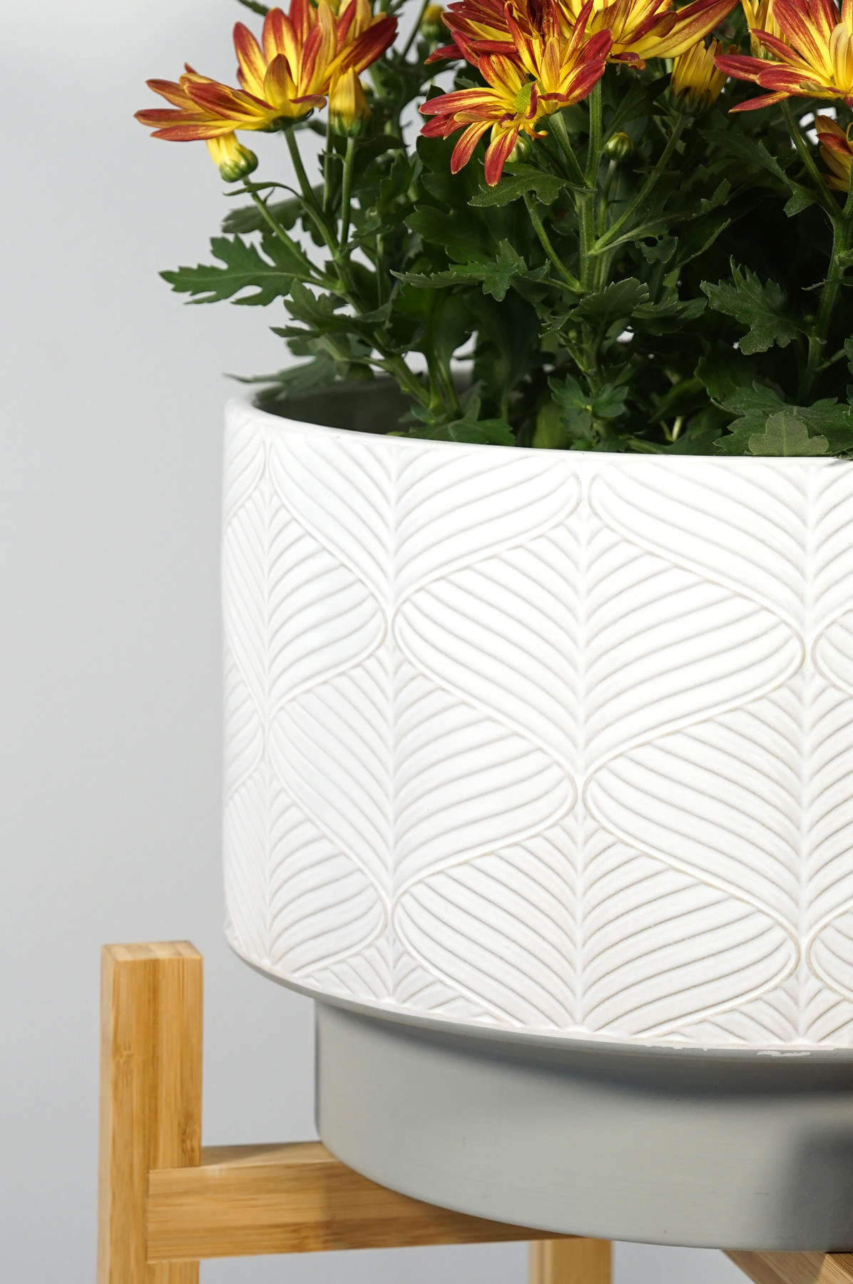 the ceramic planter