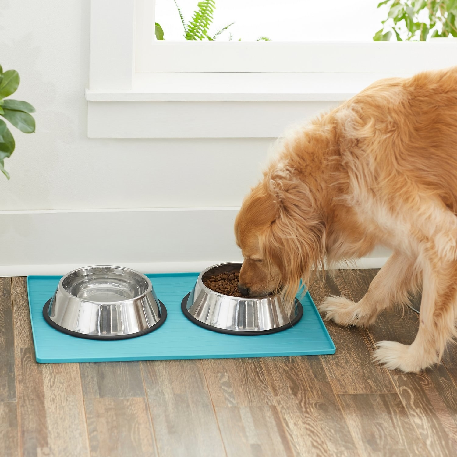 a dog eating from a bowl that's resting on the mat