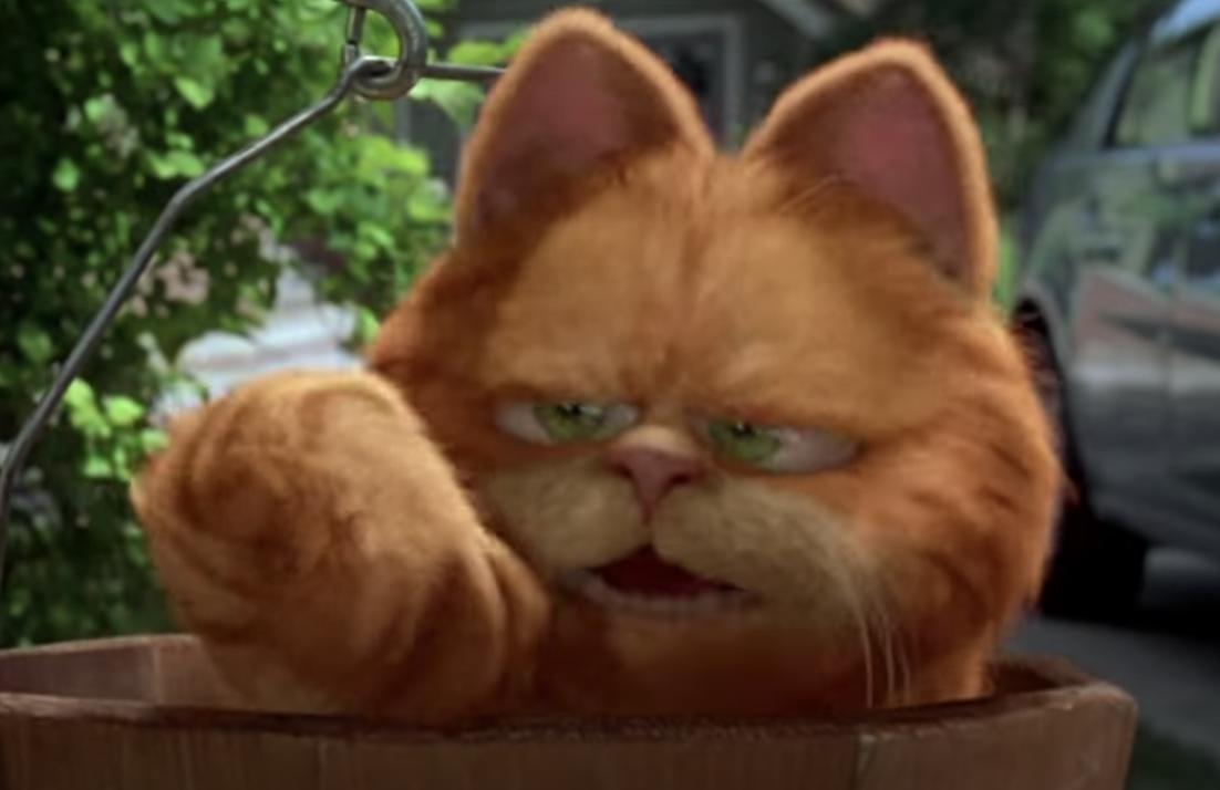 Garfield looking annoyed