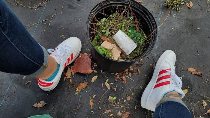 Review photo wearing white Adidas sneakers with red stripe