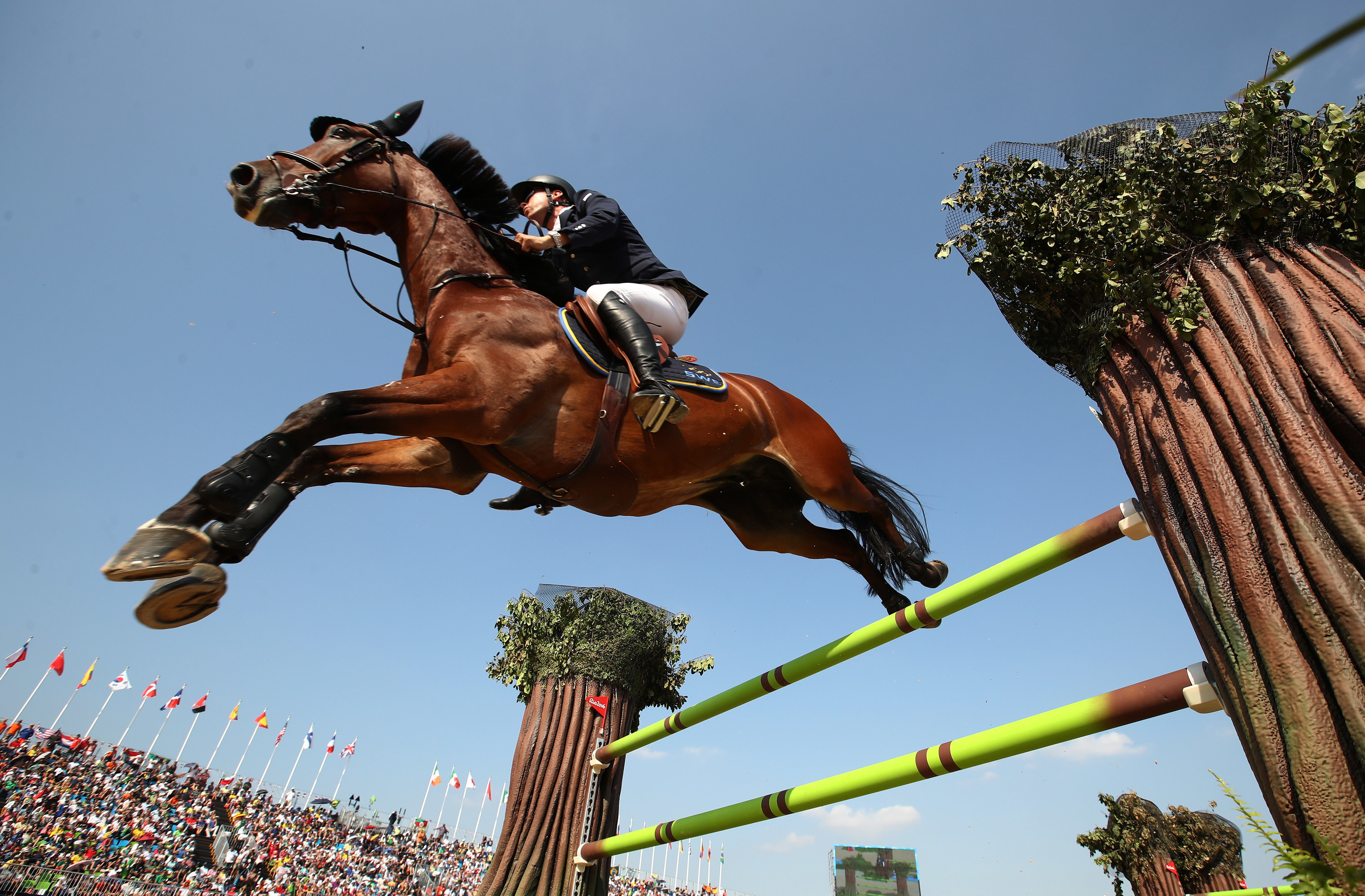 Horse leaps over hurdle with jockey on their back