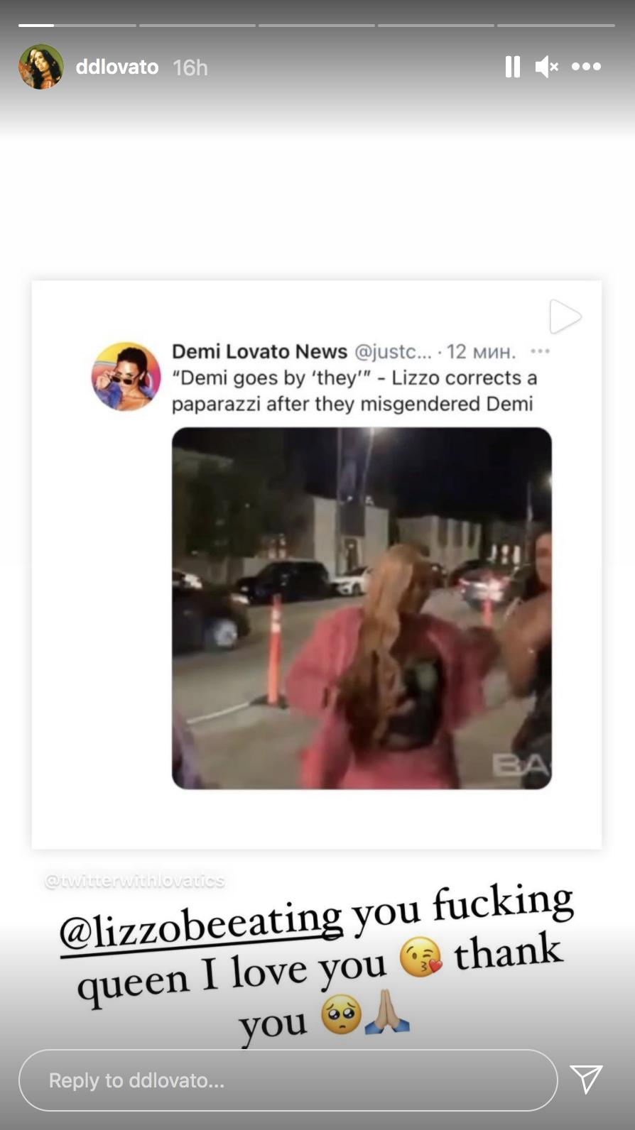 A screenshot taken from Demi Lovato's Instagram Story