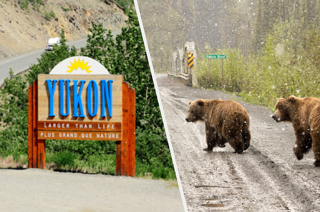 Here Are 16 Things You Need To Know Before Travelling To Yukon
