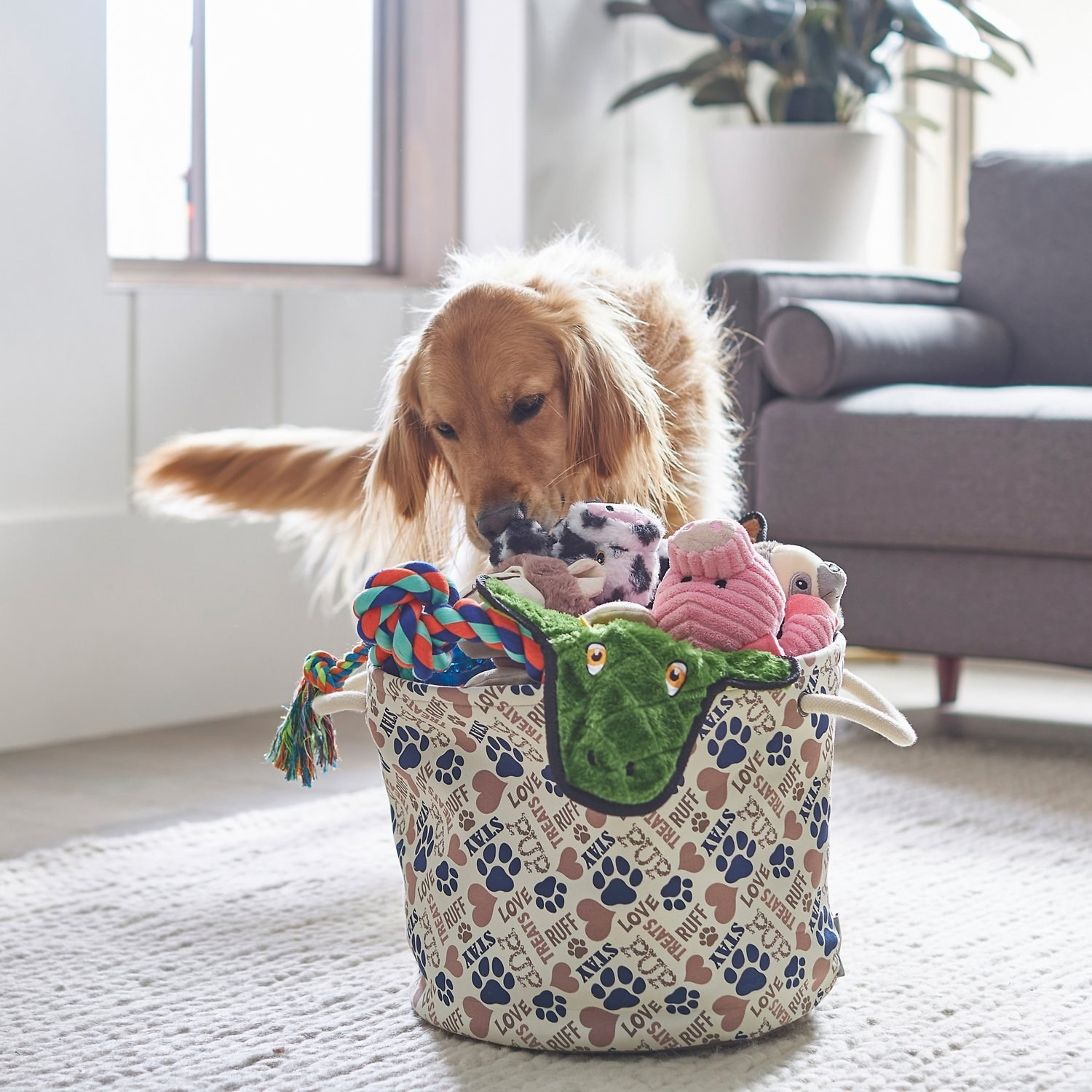 A dog grabbing a toy from the bin in a living room