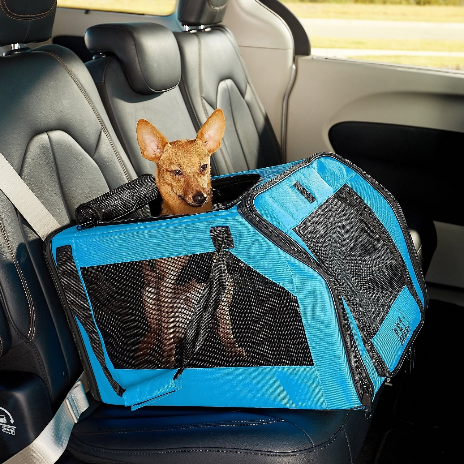 A small dog in the carrier that is strapped into the backseat of a car