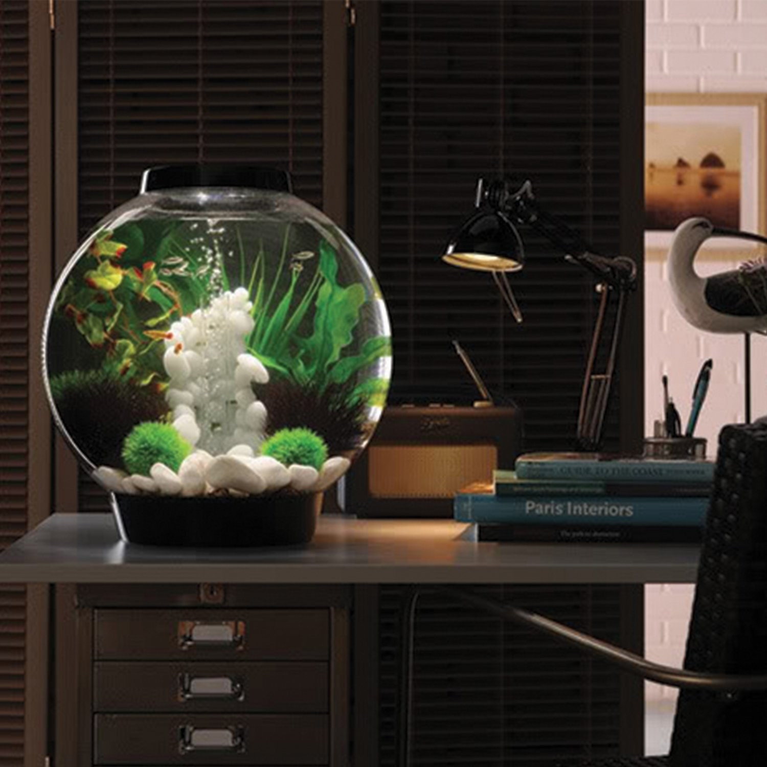 The round aquarium with LED lighting in a home office