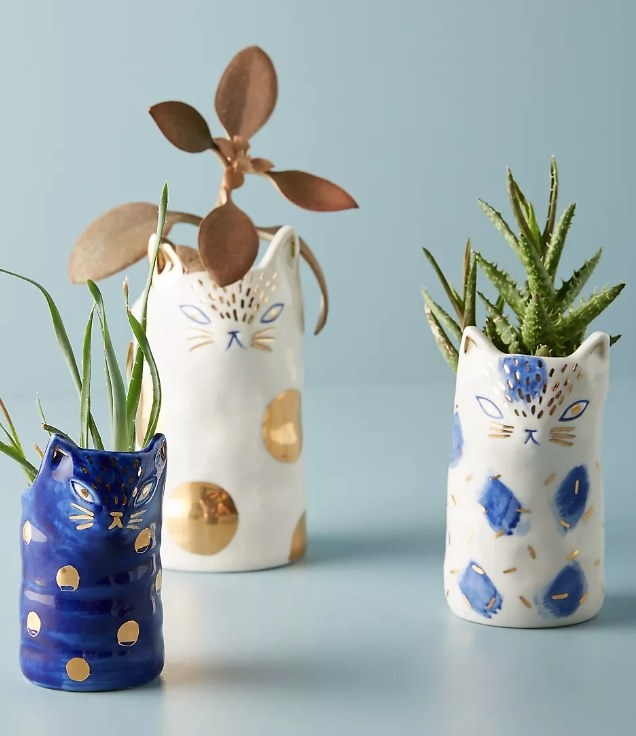 Three blue/gold/white kitten planters filled with plants