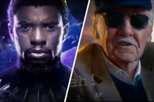 Black Panther and Stan Lee in the Marvel intros