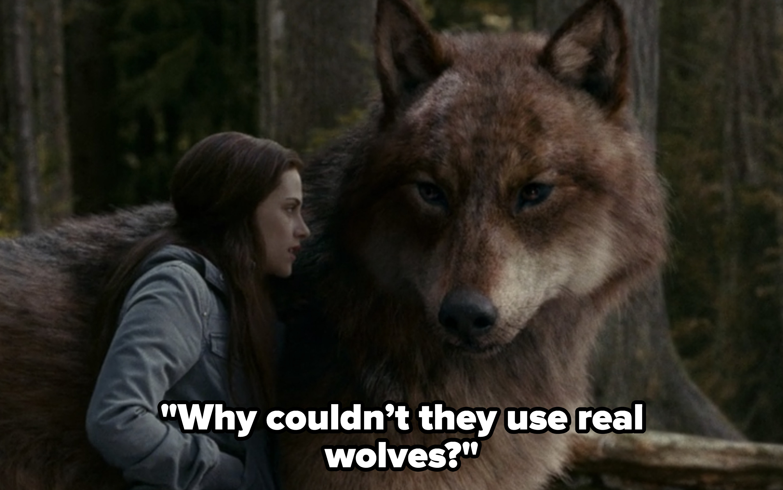 Jacob as a CGI wolf with Bella. Rob: Why couldn't they use real wolves?