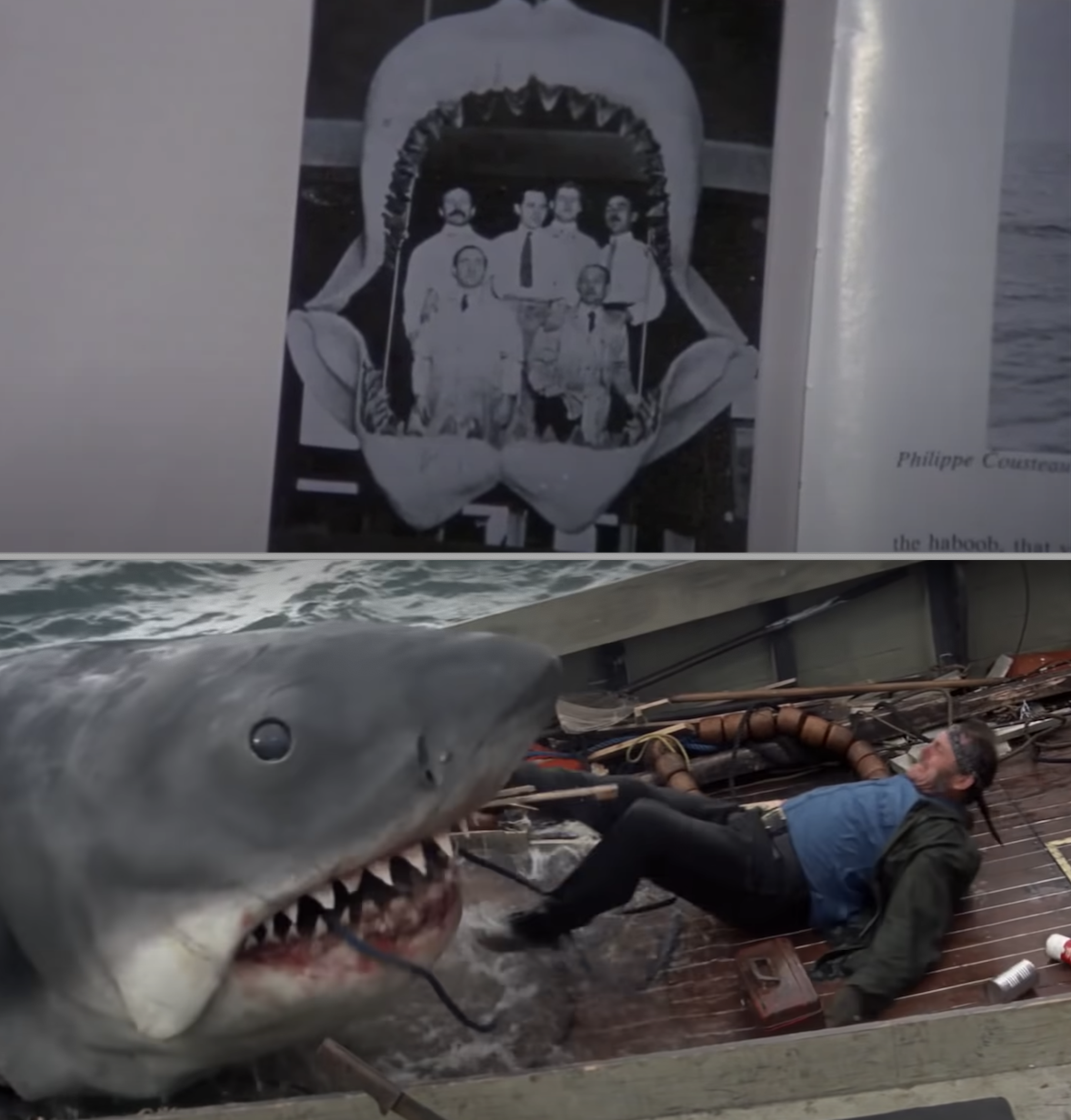 Bruce, the shark, attacking someone in a boat
