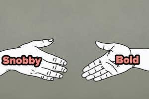 snobby or bold