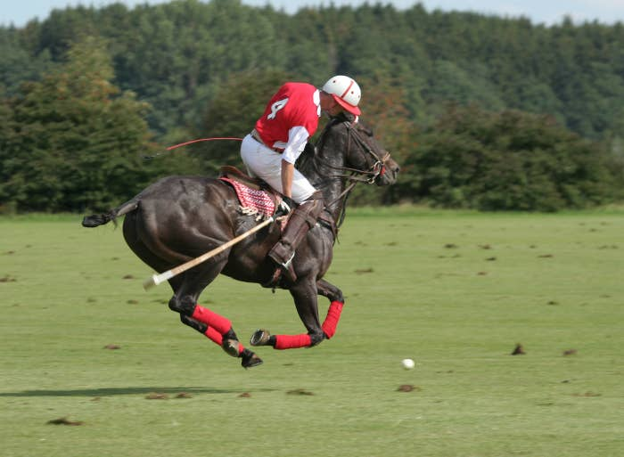 Polo player hitting a ball while on a horse