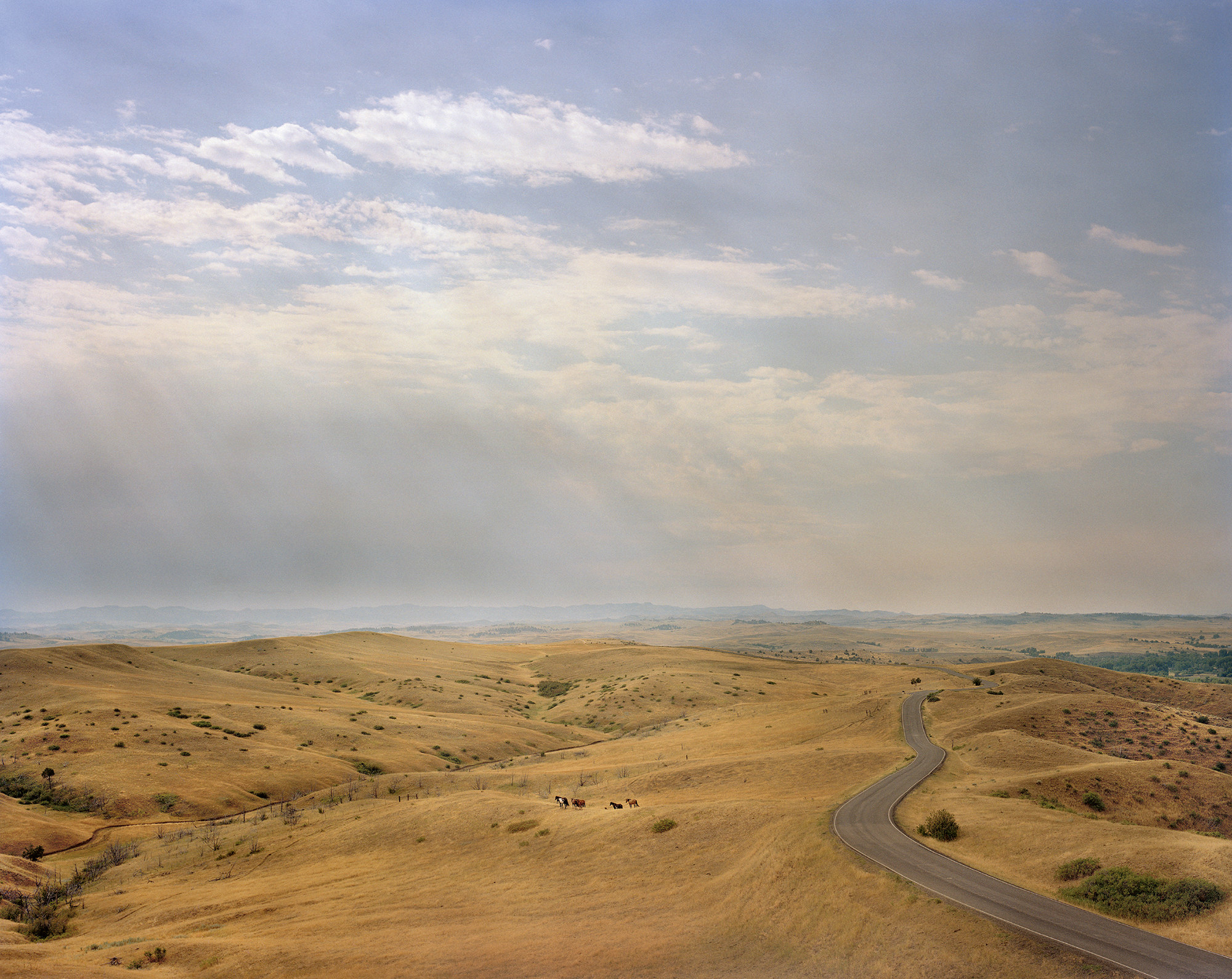 Horses appear as small images against a backdrop of highway and arid land