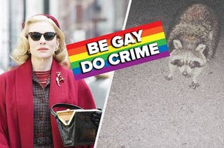 carol next to a tricksters raccoon with a sign that says be gay, do crime