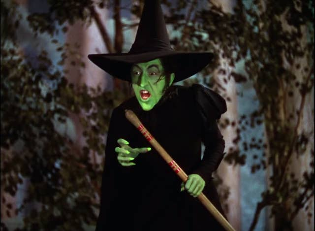 The Wicked Witch of the West from the Wizard of Oz
