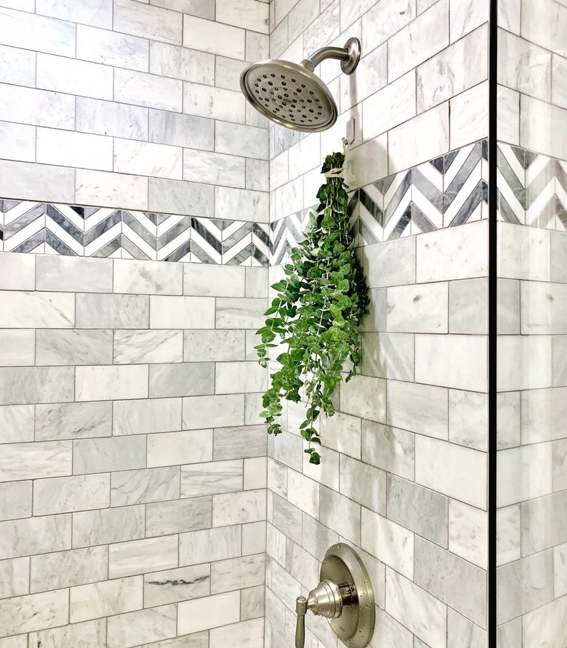 A bundle of the fresh eucalyptus hanging in a shower
