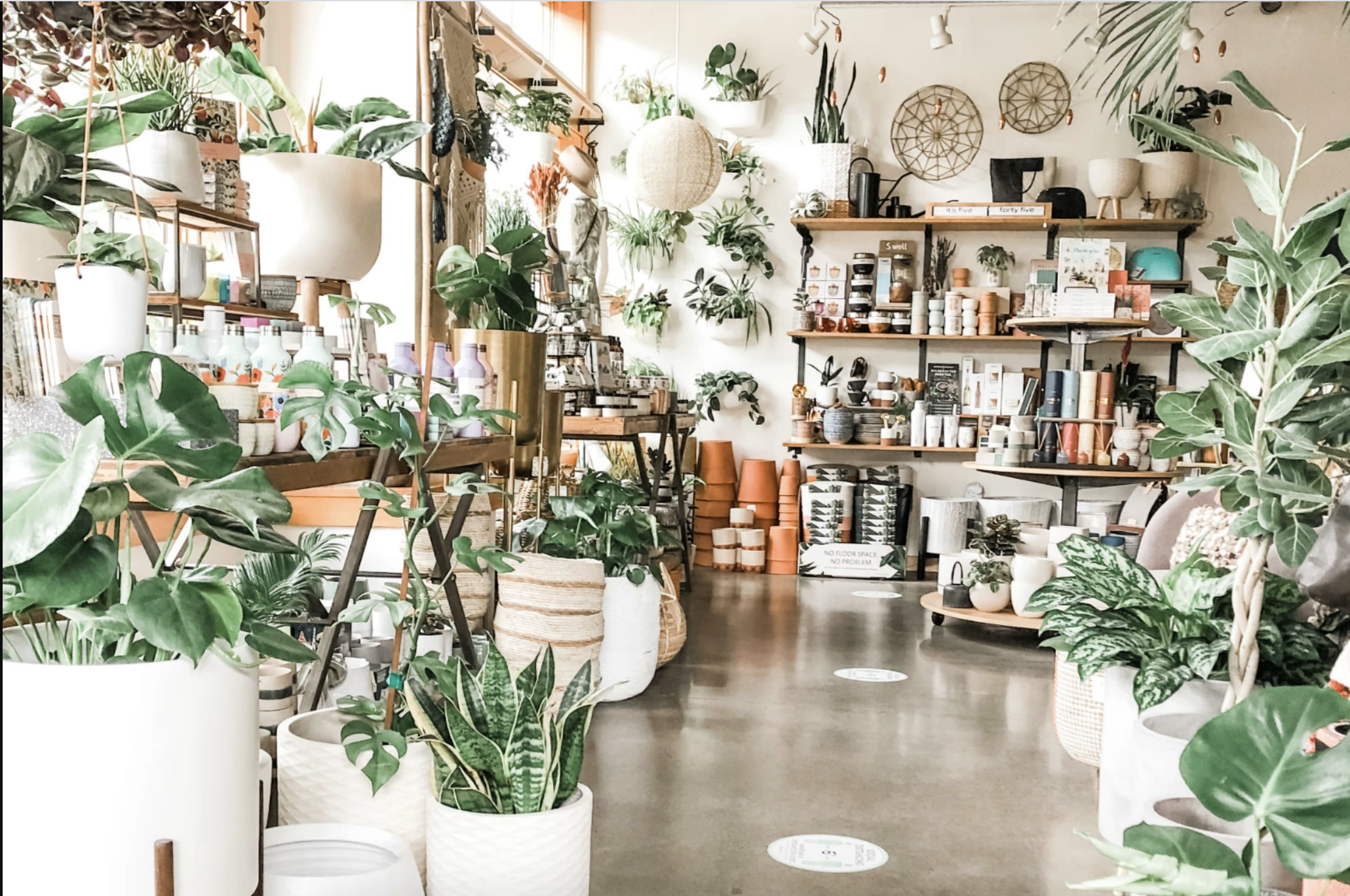 The store is packed with plants and plant supplies