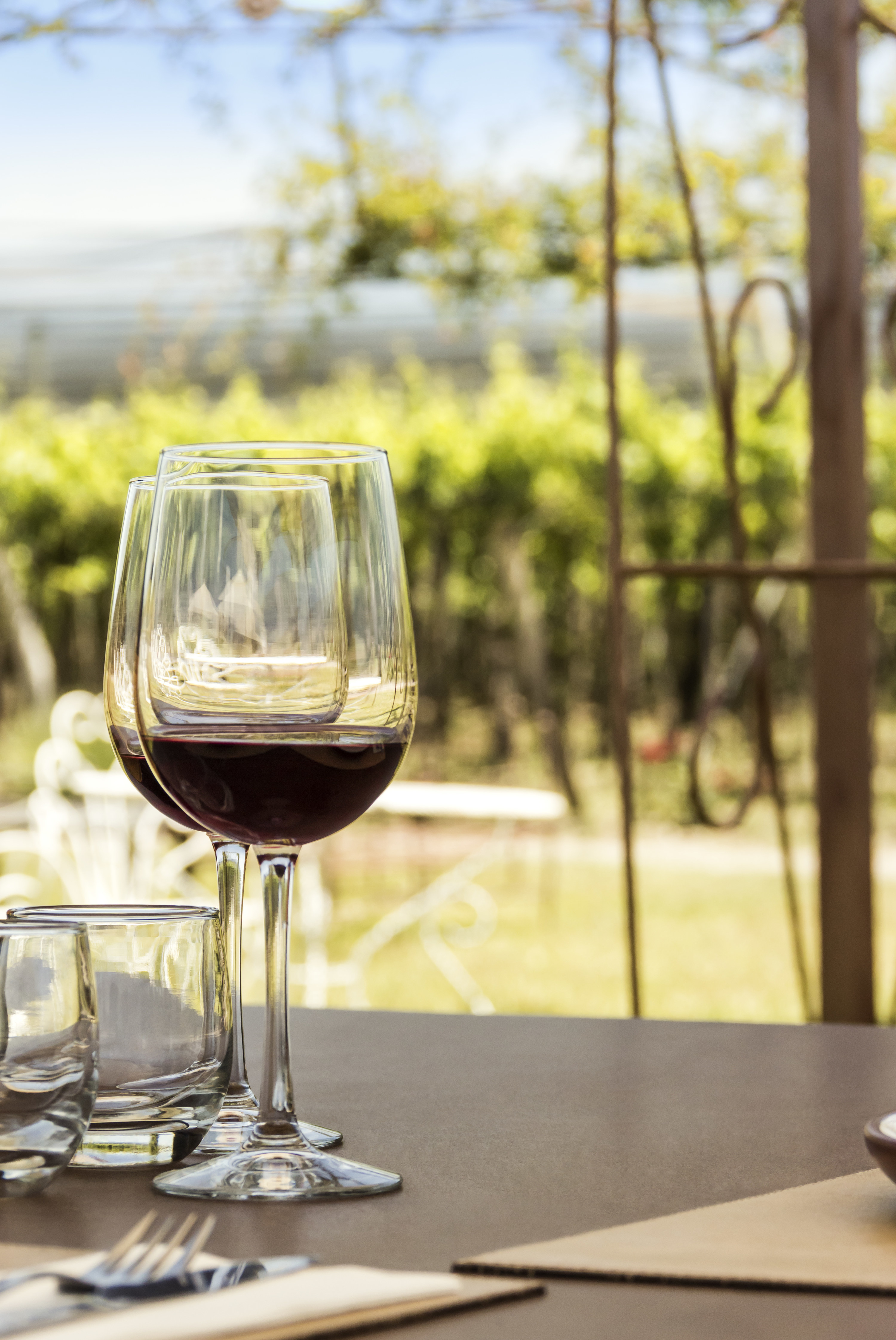 Red wine in front of vineyards