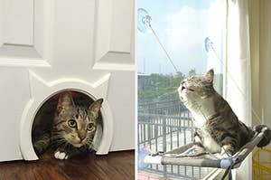 to the left: a cat poking their head out of a hole in the door, to the right: a cat sitting in a window hammock