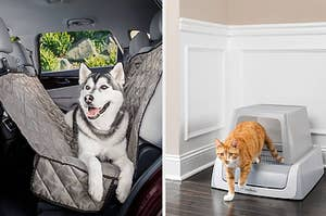 The hammock car seat cover and self-cleaning litter box