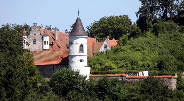 28-room historic castle in the forrest