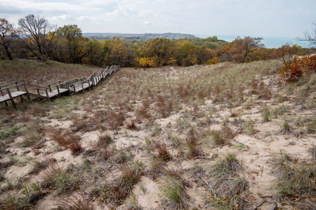 View of the Indiana Sand Dunes State Park in Chesterton, Indiana