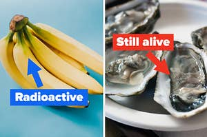 """""""radioactive"""" with an arrow pointing to bananas, then """"still alive"""" with an arrow pointing to oysters"""