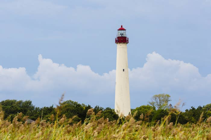 The lighthouse in Cape May, New Jersey which is near the area's bird observatory