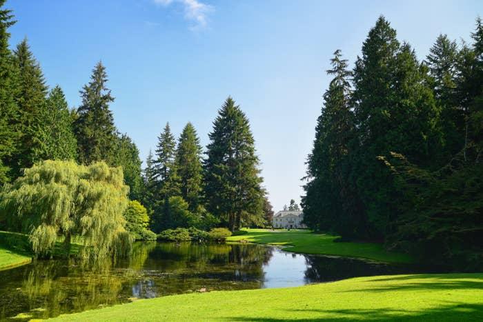 A park and lake onBainbridge Island