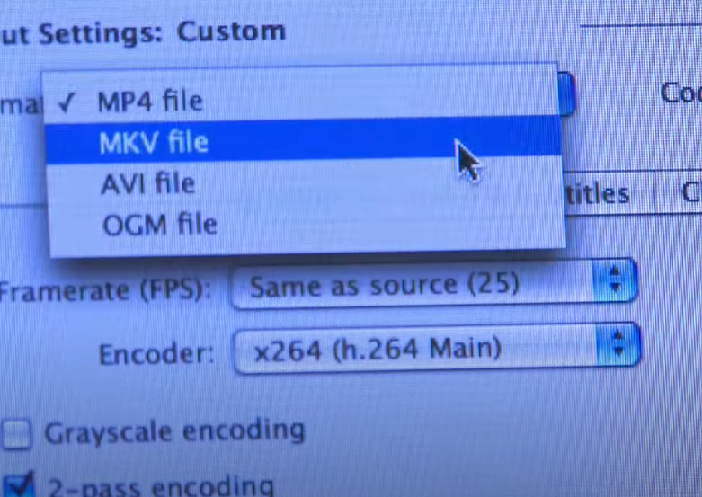 Screenshot of computer screen with files type being selected