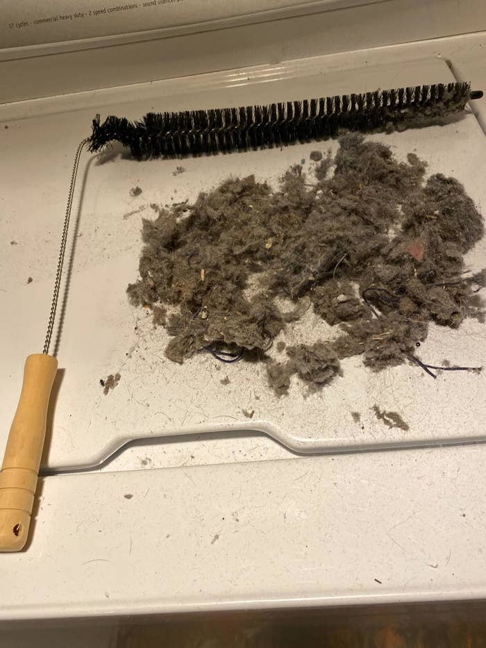 reviewer image of the dryer vent cleaner next to a pile of lint and dust