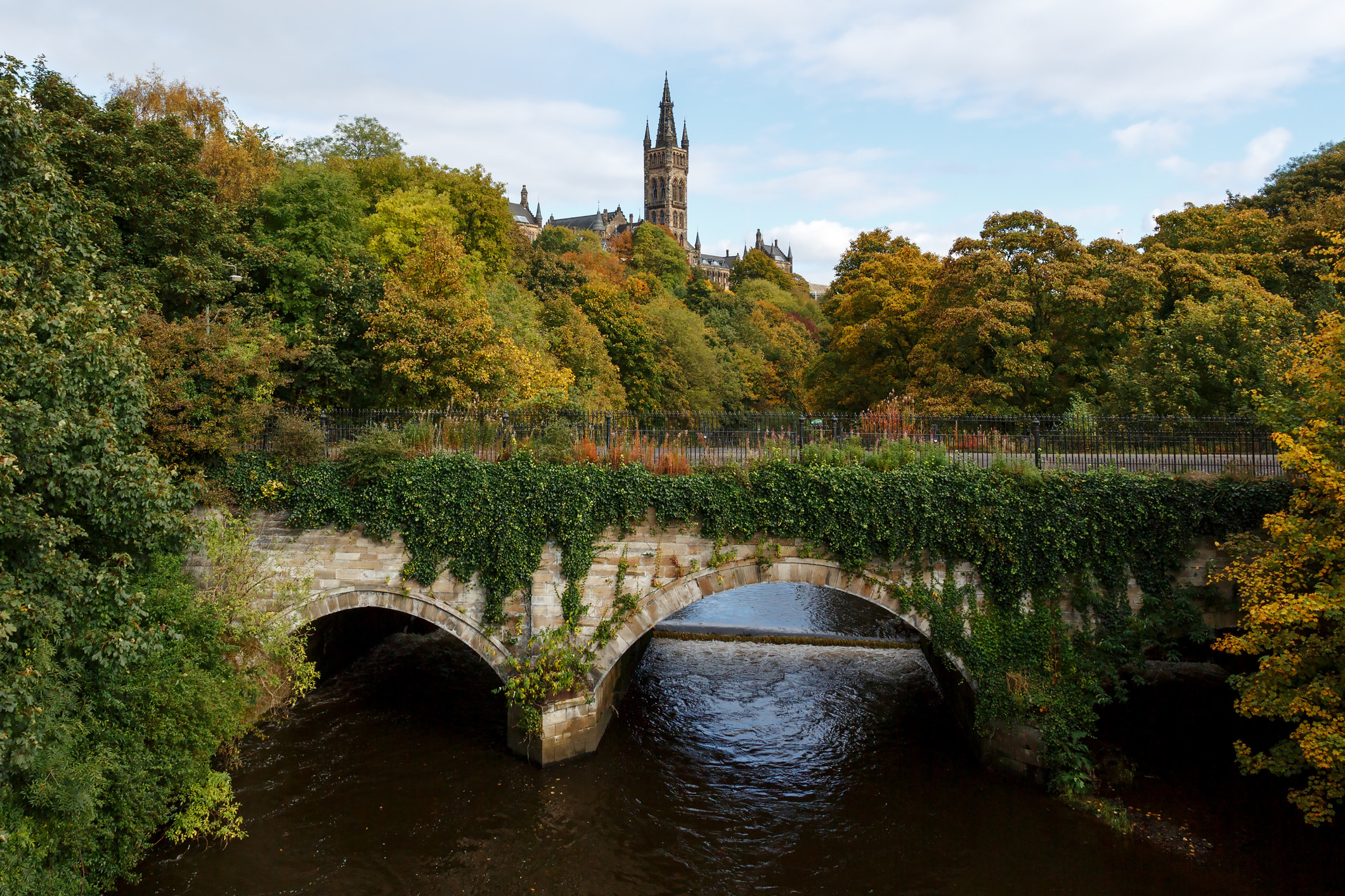 Lush trees and a bridge in Glasgow.