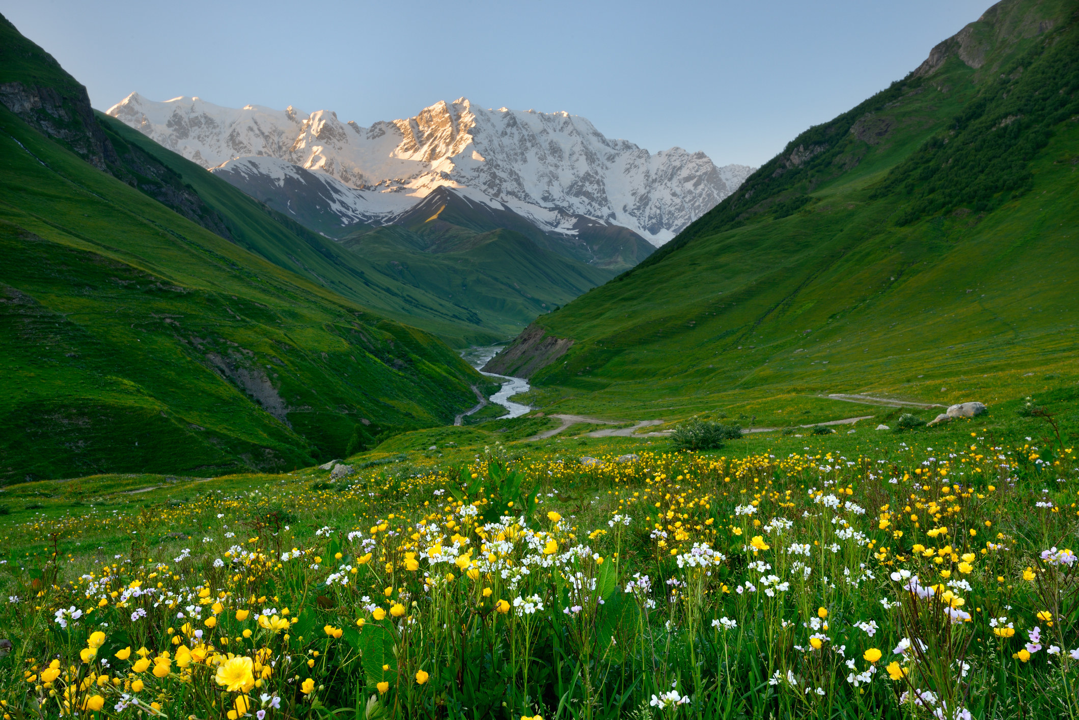 A meadow and mountains in Svaneti, Georgia.