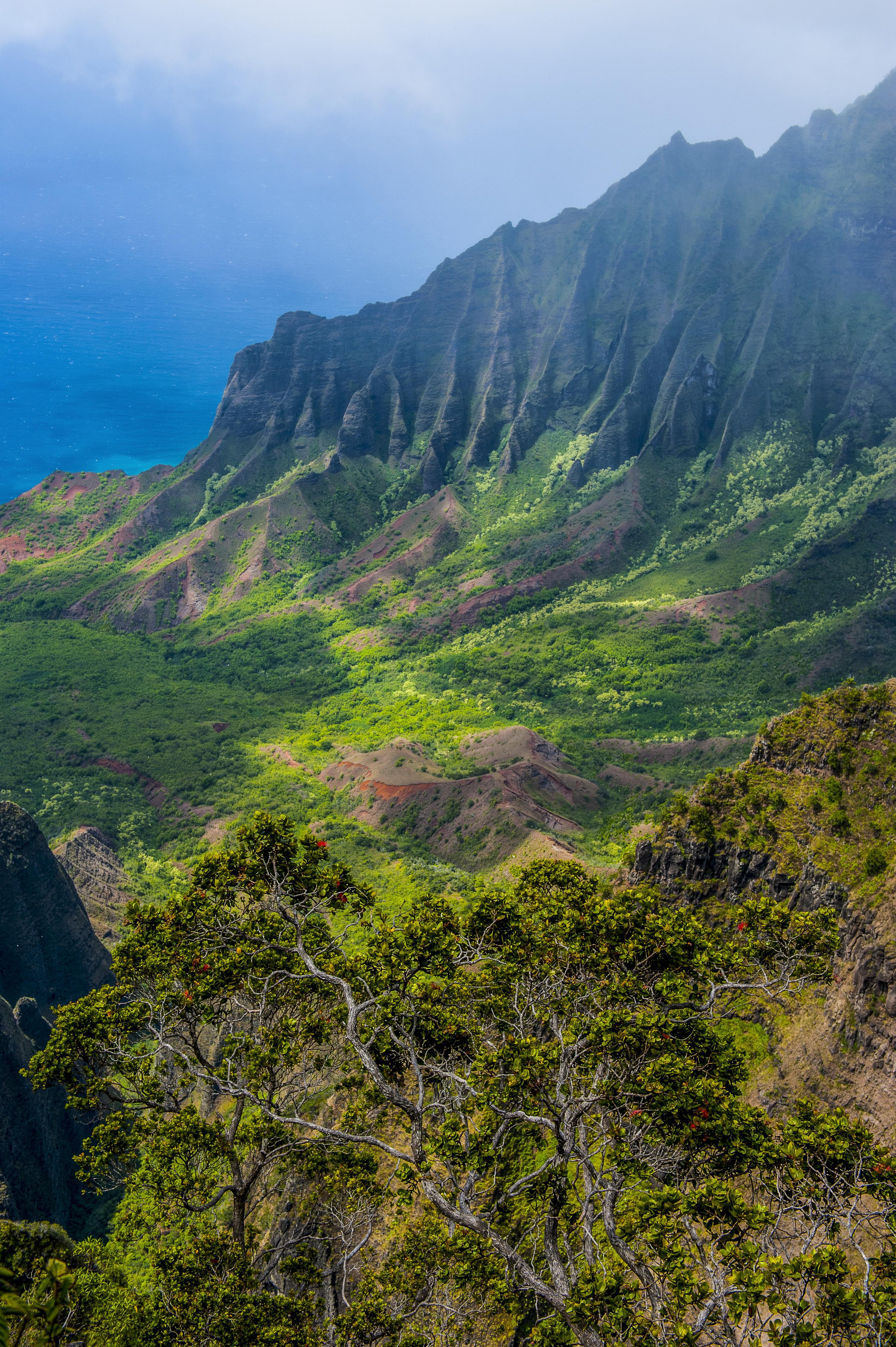 Koke'e' State Park in Hawaii