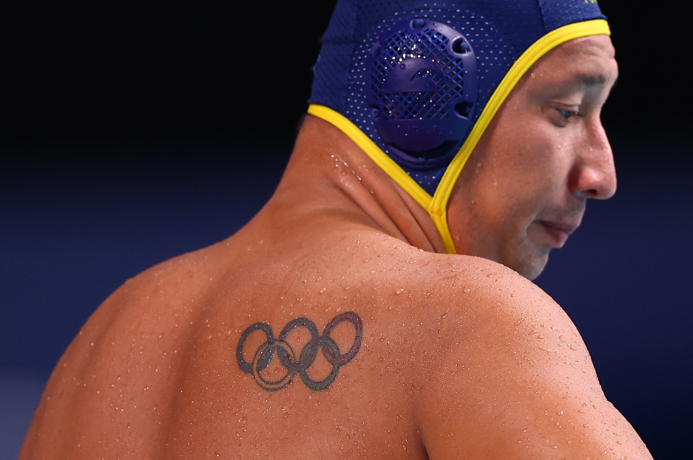 Close-up of wet back of Olympic male athlete with swim cap on head.