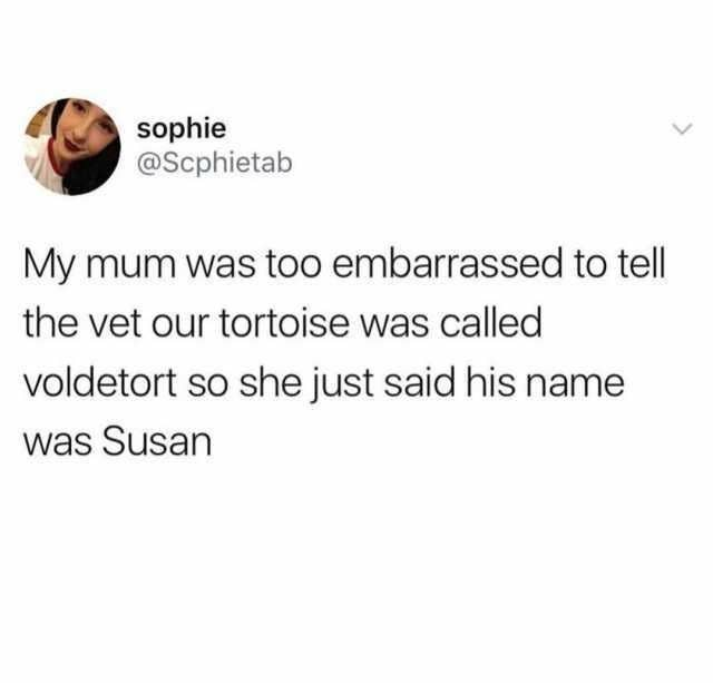 tweet reading my mum was too embarassed to tell the vet our tortoise was called voldetort so she just said his name was susan