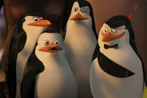 Rico, Skipper, Kowalski, and Private stand side by side with Skipper wears a small bow tie